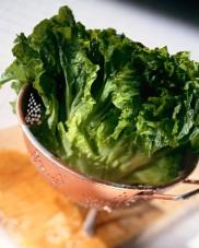 Lettuce in Colander
